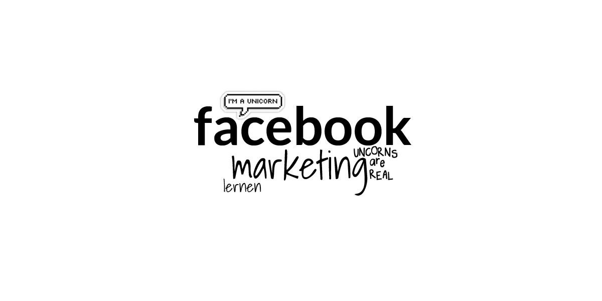 Online-kursus i Facebook-markedsføring: Hurtigt kursus i annoncer og fans for ledere af sociale medier